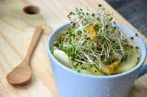 Salat-Bowl mit frisch geernteten Brokkolisprossen auf Holzbrett