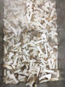 geschnittene Pilze beim Anbraten