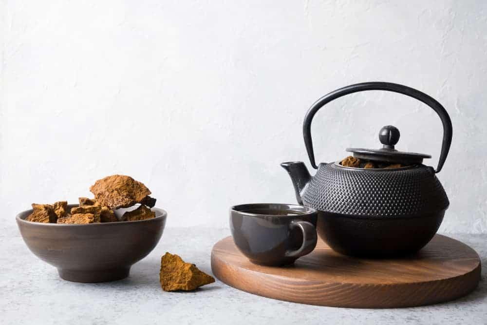 Chaga Tee Brocken und Teekanne